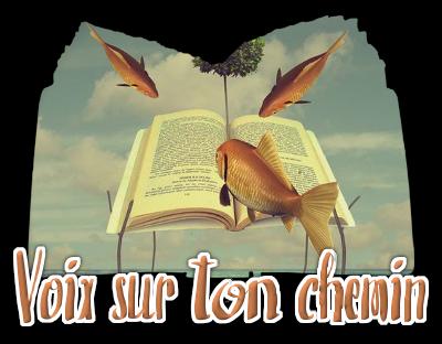 http://gazette.poudlard12.com/public/AmyPont/GdS_141/voix_sur_ton_chemin.png