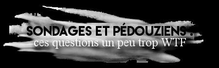 http://gazette.poudlard12.com/public/AmyPont/GdS_149/sondage_et_pedouziens.png