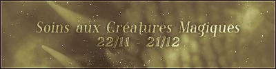 Soins aux Créatures Magiques (22/11 – 21/12)