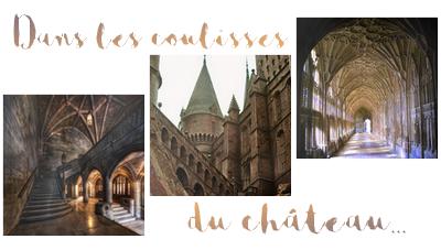 http://gazette.poudlard12.com/public/Ellie/128/Dans_les_coulisses_du_chateau.png