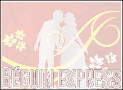 http://gazette.poudlard12.com/public/Ginny/Gazette_131/Beguin_express.png