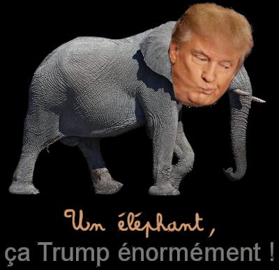 http://gazette.poudlard12.com/public/Lea/137/Un_elephant_ca_trump_enormement.png