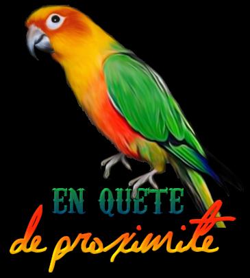 http://gazette.poudlard12.com/public/Lea/147/En_quete_de_proximite.png