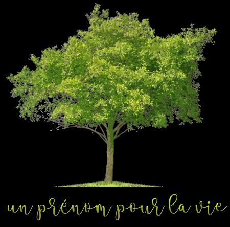 http://gazette.poudlard12.com/public/Lea/147/Un_prenom_pour_la_vie.png