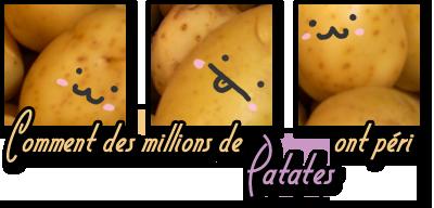 http://gazette.poudlard12.com/public/Wilde/Gazette_66/Comment_des_millions_de_patates_ont_peri.png
