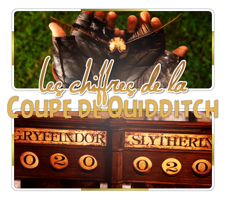 http://gazette.poudlard12.com/public/William/Gazette_144/Les_chiffres_de_la_Coupe_de_Quidditch.png